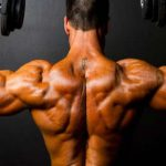 10 Best Muscle-Building Back Workouts